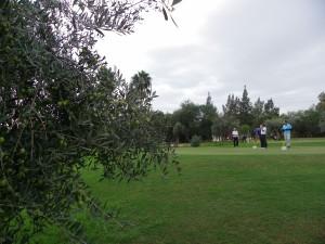 Torneo Guadalquivir 6